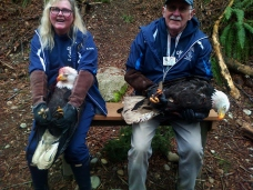 Taking a much needed rest on the hike back.Colin and Mindy were amazing at handling these majestic birds, although Mindy did take a sharp bite to her upper arm!