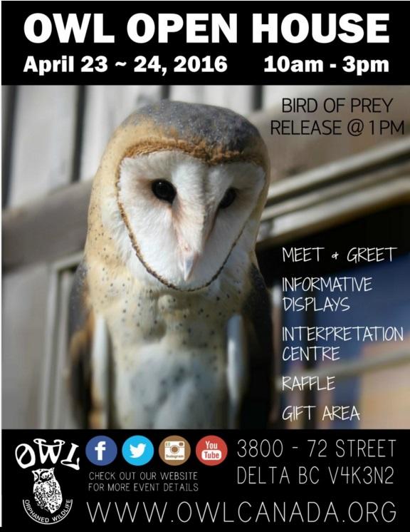 OWLopenhouse